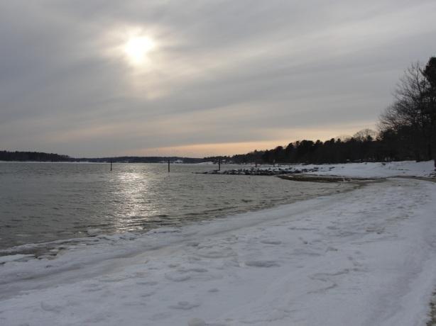 Winter Sun DSC09206