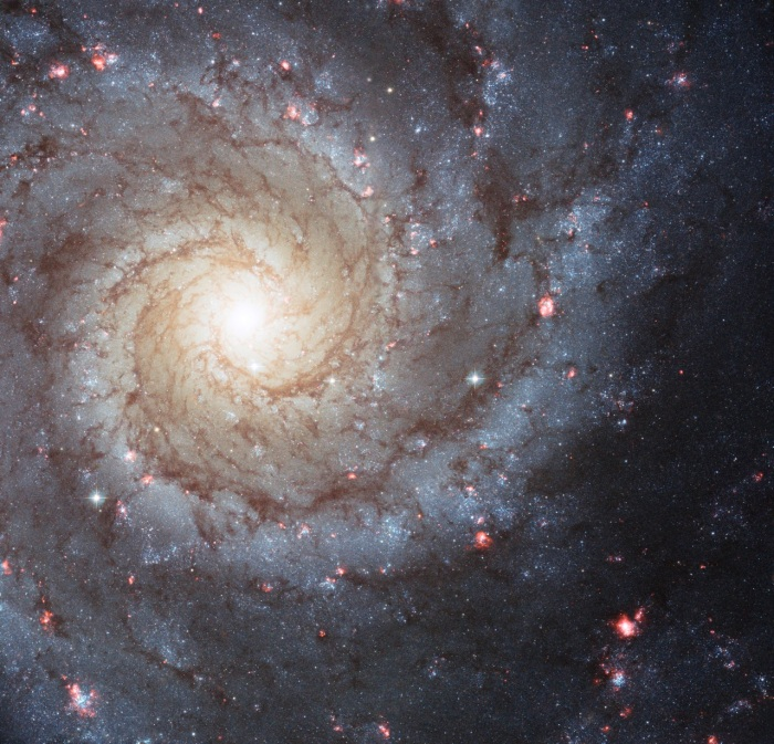 Hubble Image of Spiral Galaxy