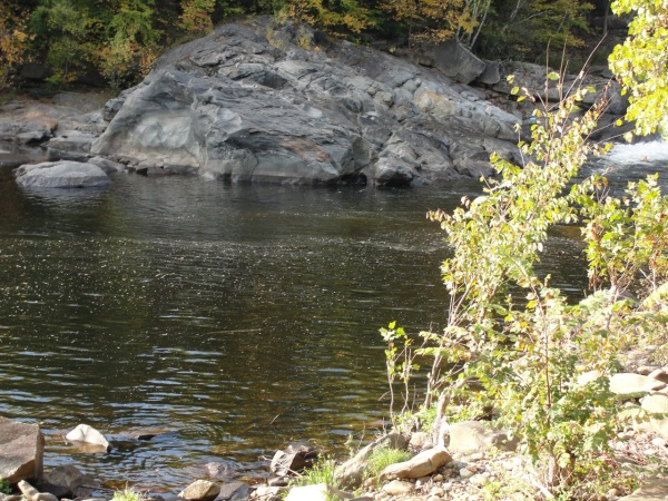 River MJ DSC00578
