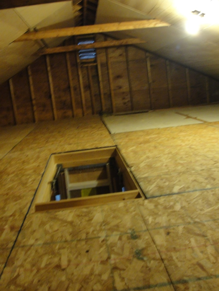 Attic/before photo