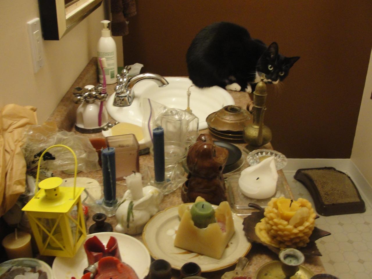 Billie helps sorting