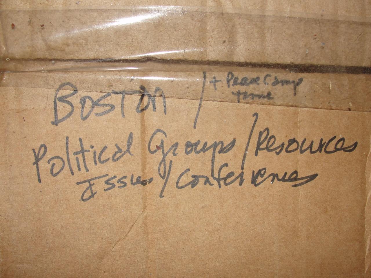 Boston Political work