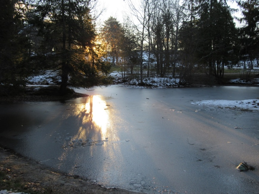 Sun on frozen pond