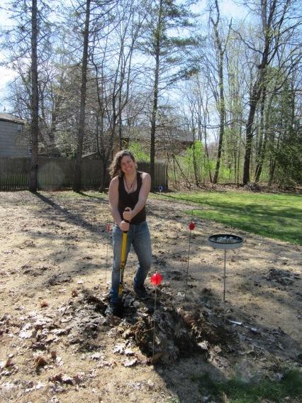Sylvia starts digging