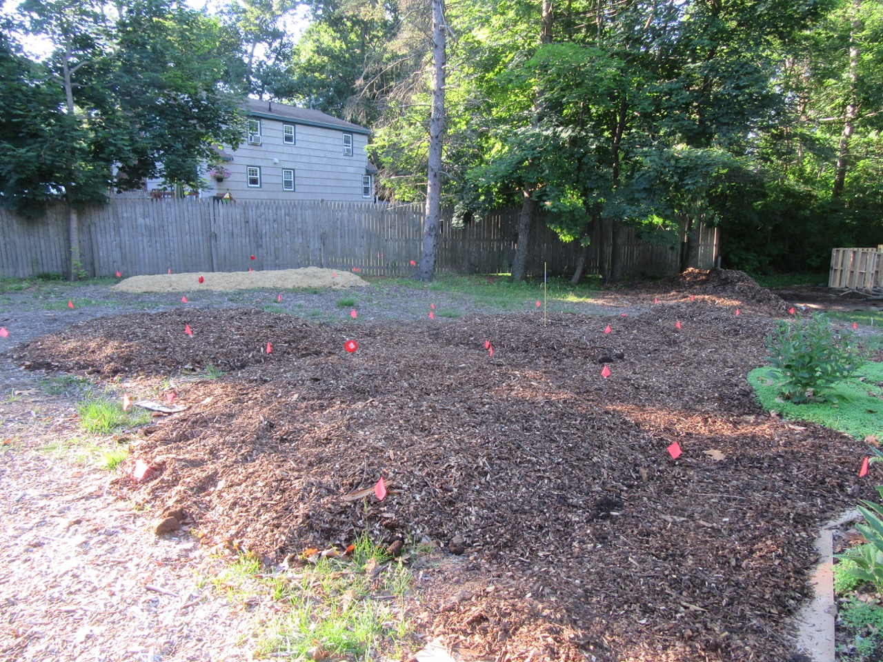 After-Fruit Tree & Flower/Herb Beds