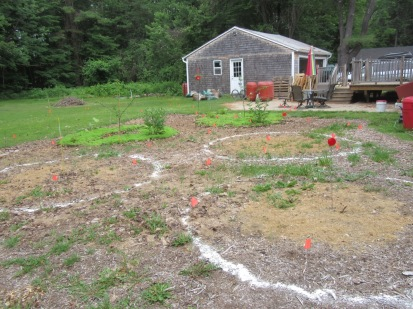 Before-marked for fruit tree beds