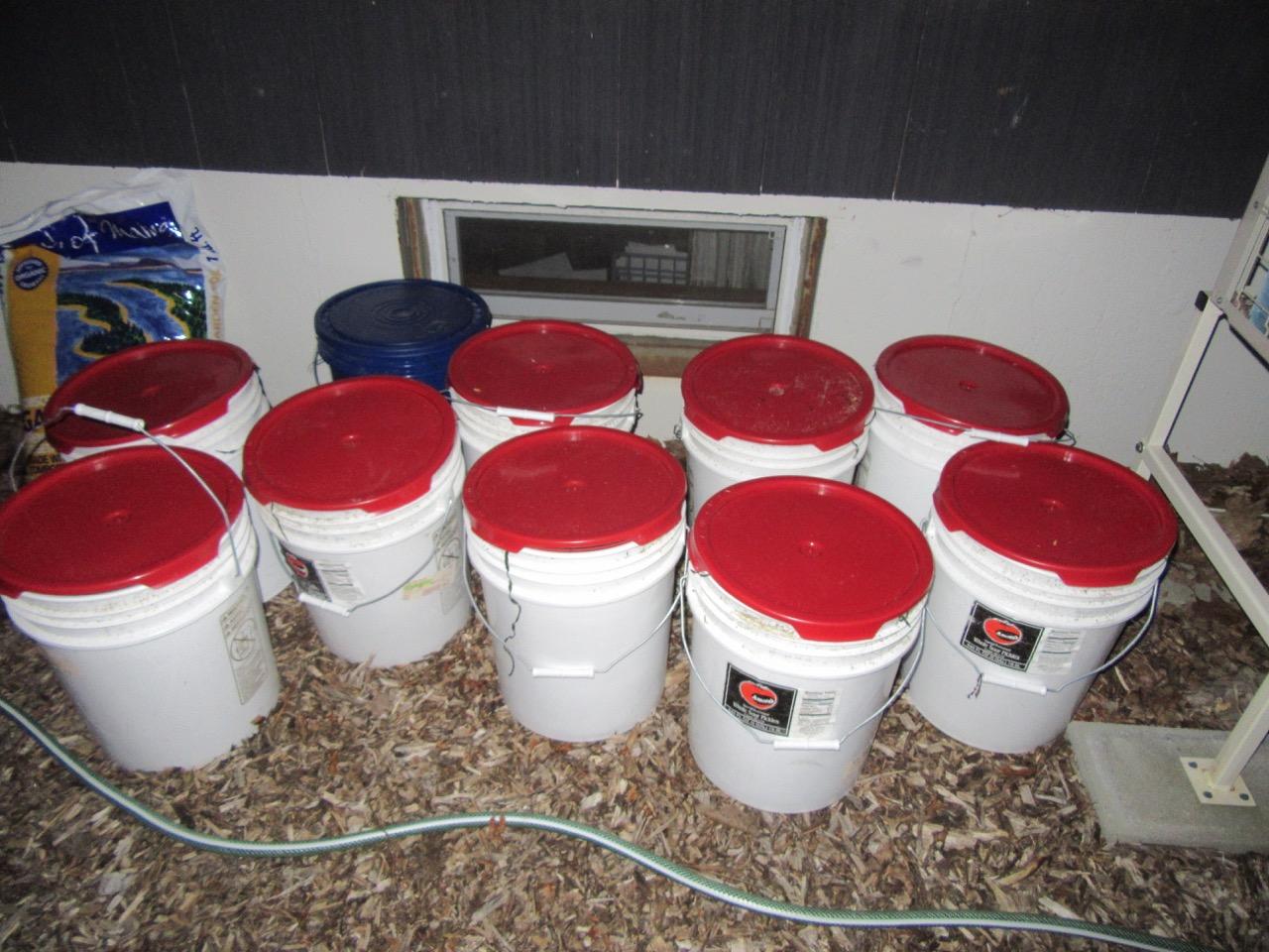 Buckets of seaweed