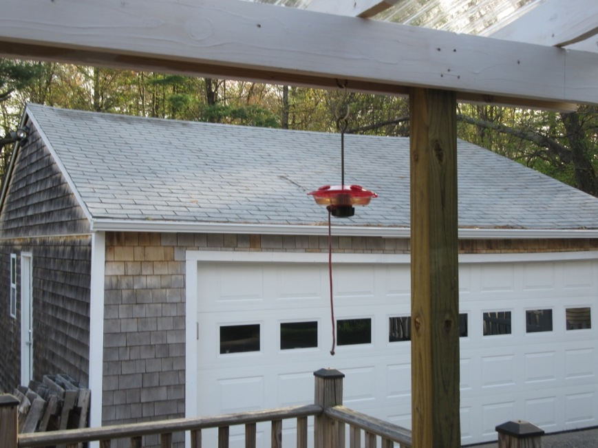 Hummingbird Feeder small