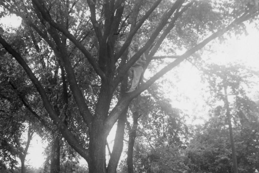 Heie Johnson in a tree – Version 2