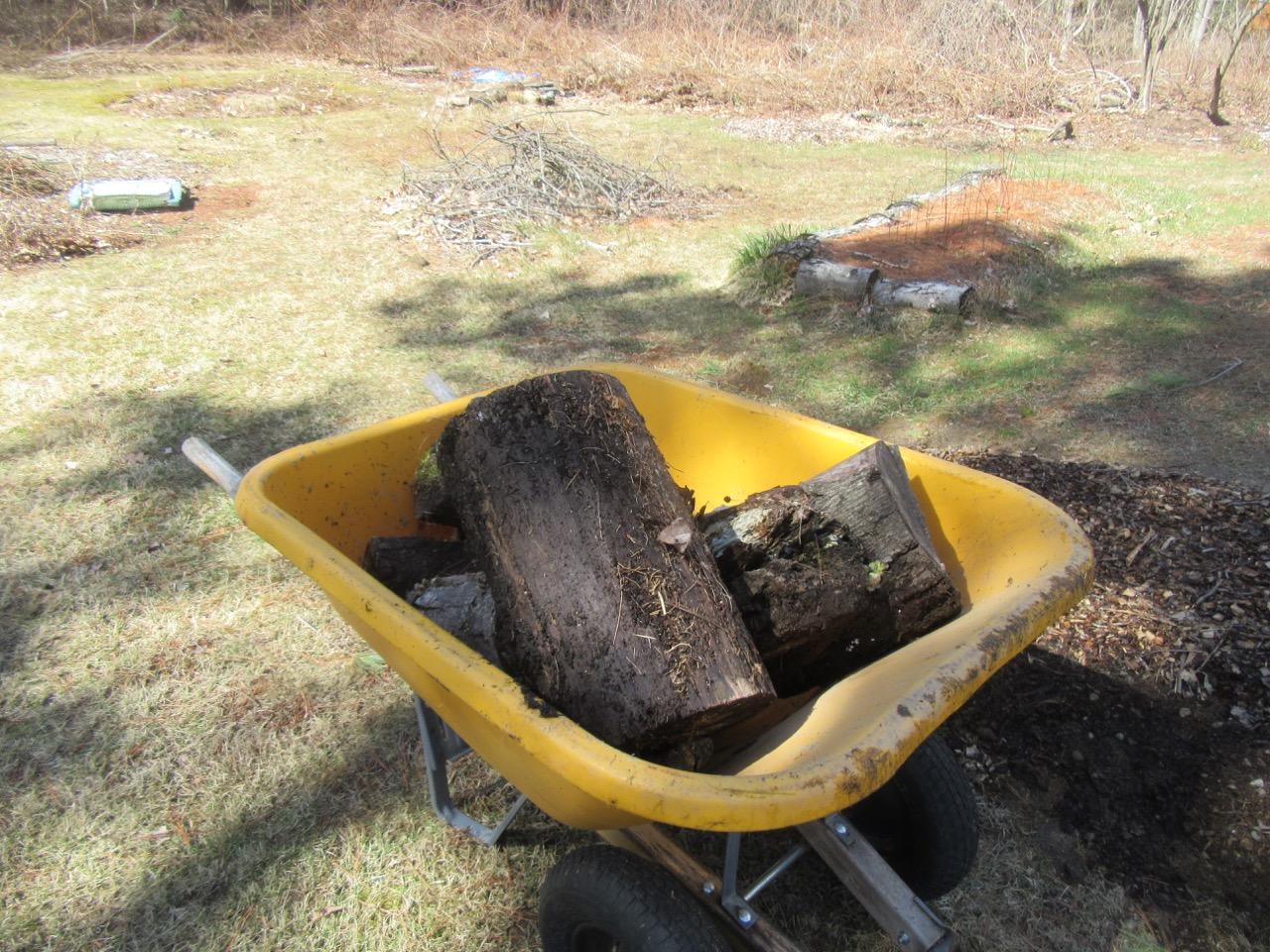 Logs for hugelkultur