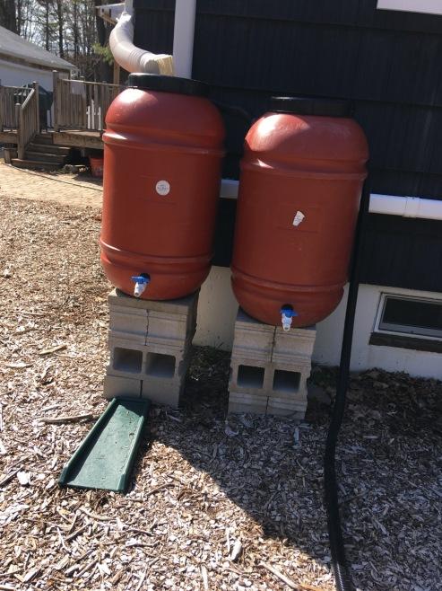 Rain barrels setup