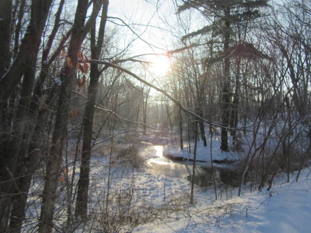 Sun shining over brook on winter solstice morning